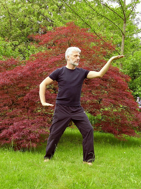 La terapia natural QIGONG o Chi Kung