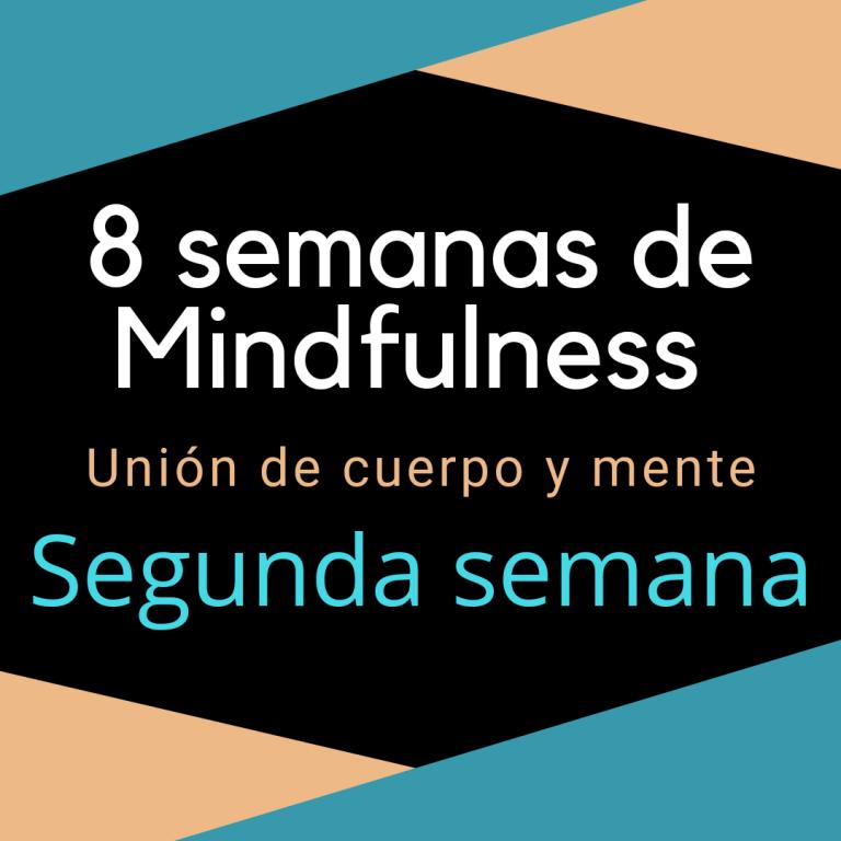 Segunda semana de Mindfulness : cómo unir cuerpo y mente