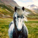 pasear a caballo por la naturaleza